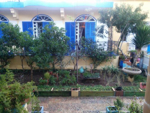 Der erste Blick aus dem Fenster wieder eine grüne Oase und eines der wunderschönen Riads die Villa Flora.